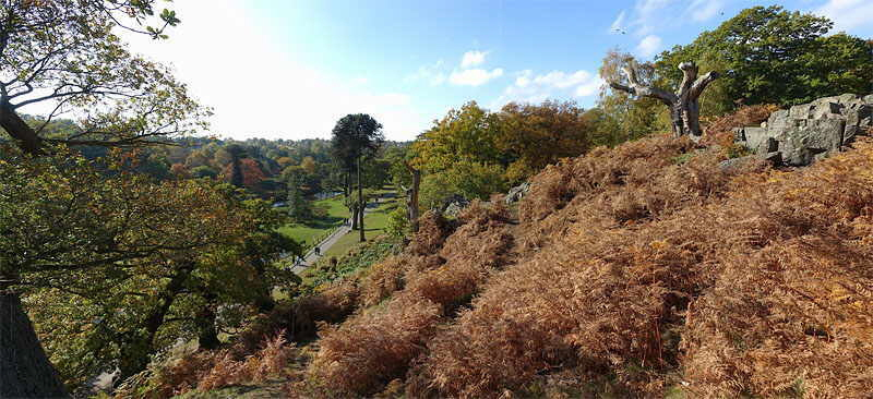 "Bradgate Park, Leicestershire, Panorama photograph with ""Little Matlock"""